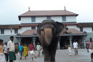 dharmasthala1