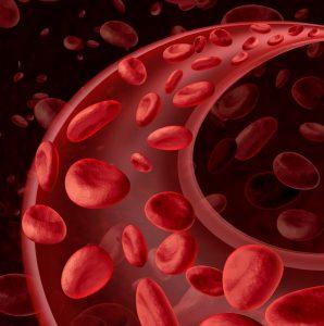 bigstock-blood-cells-circulation-58090832